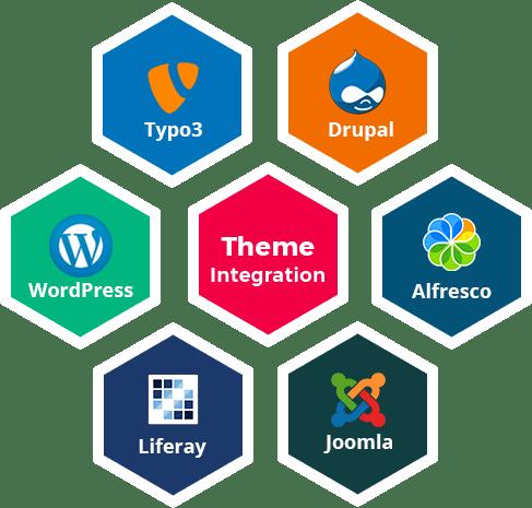 Professional Theme Integration Company